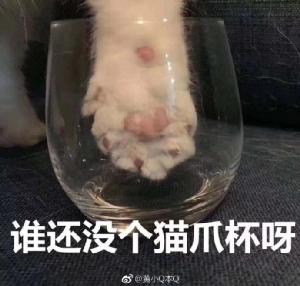"""ภาพล้อเลียนในเว่ยปั๋ว """"ใครยังไม่มีแก้วตีนแมวบ้าง"""""""