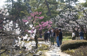 สวนเคนโระคุเอ็น (ภาพ : JNTO)