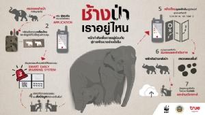 """กลุ่มทรูผนึกพันธมิตร """"ผสานเทคโนโลยีเครือข่ายความเร็วสูง"""" ลดปัญหาความขัดแย้งคนกับช้างป่า ส่งเสริมการอยู่ร่วมกันอย่างสมดุลและยั่งยืน"""