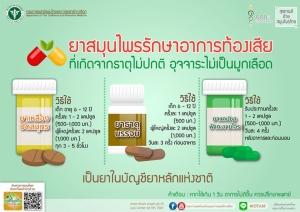 """เผย 2 ตำรับยาไทย-4 สมุนไพร ตัวช่วยรับมืออาการ """"ท้องเสีย"""" ช่วงหน้าร้อน"""
