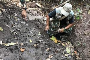 พบรอยตีนเสือโคร่งในป่าน้ำหนาว หลังหายไป 10 ปี บ่งชี้ห่วงโซ่อาหารอุดมสมบูรณ์