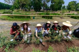 'กัลฟ์' ต้อนรับนักศึกษาชาติเยี่ยมชมโรงไฟฟ้า พร้อมจัดเวิร์คช็อปการเกษตร ต่อยอดความร่วมมือพัฒนาชุมชน