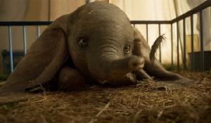 Dumbo น่าเป็นห่วง! เปิดตัวทำเงินสัปดาห์แรก 45 ล้านเหรียญฯ