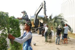 กองทัพภาคที่ 4 ร่วมสวนนงนุชพัทยา เนรมิตรสวนต้นไม้ศักดิ์สิทธิ์ สนง.คณะกรรมการอิสลามยะลา