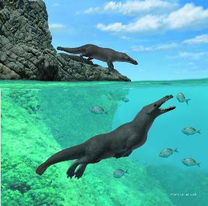 """พบฟอสซิล """"วาฬ"""" มี 4 ขา"""