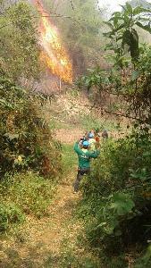 พระเจ้าอยู่หัวฯพระราชทานพวงมาลาหลวง-หีบเพลิง หน้าหีบศพอาสาดับไฟป่าเชียงราย