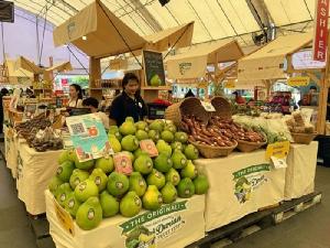 """อิ่มไม่อั้น """"เทศกาลบุฟเฟต์ทุเรียนและสุดยอดผลไม้ไทยที่ใหญ่ที่สุดในประเทศไทย"""" ณ ศูนย์การค้าเซ็นทรัลเวิลด์"""