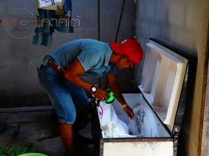 หนุ่มพัทลุงรับจ้างเลี้ยงหมูคิดรวยทางลัดแอบขายยาบ้าให้วัยรุ่นในพื้นที่