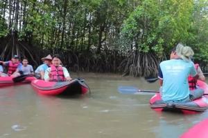 เที่ยวพังงาต้องไม่พลาด พายแคนูชมป่าโกงกาง ตำกะปิแบบโบราณ ที่บ้านสามช่องเหนือ
