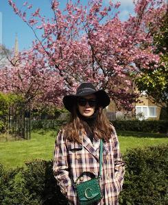 ซากุระบานสะพรั่งทั้ง IG! ใครๆ ก็ไปชมดอกไม้บาน