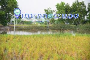 """สมาคมเพื่อนชุมชน ชู """"เกาะกก – บ้านฉาง"""" ต้นแบบเมืองน่าอยู่ สังคมยั่งยืน"""
