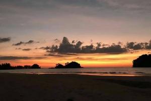 """มารู้จัก """"เกาะพระทอง"""" ชม """"ทุ่งหญ้าสะวันน่า"""" แห่งทะเลอันดามัน หลังไฟป่าเผาวอดพันไร่"""