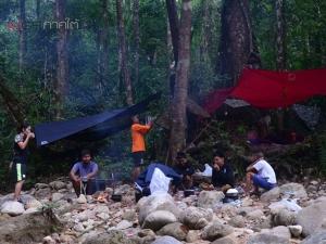 """นักท่องเที่ยวเดินป่าฮือฮาพบตัว """"สมเสร็จ"""" สัตว์ป่าสงวนบนเทือกเขาบรรทัดพัทลุง"""