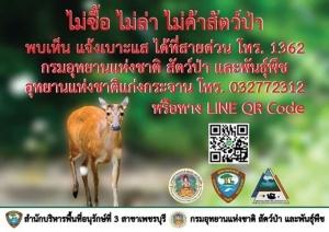 ป้องกันลักลอบล่าสัตว์ป่า อุทยานฯ แก่งกระจานจัดทำ QR Code รับแจ้งเบาะแส