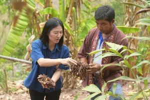 เปิดใจเกษตรกร บ้านห้วยลอย พลิกวิกฤตเขาหัวโล้น สู่แปลงเกษตรอินทรีย์
