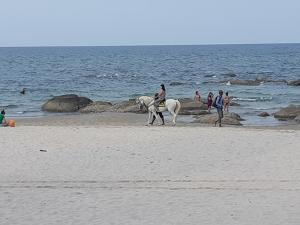 หาดหัวหินเตรียมรับศิลปินแจ๊ซจากทุกมุมโลกร่วมเทศกาลดนตรีแจ๊ซนานาชาติ