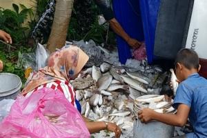 เทกระจาด! พ่อค้าควบกระบะเสียหลักพลิกคว่ำ ปลา-กุ้งเกลื่อน 6 ชีวิตในรถปลอดภัย
