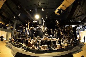 15 มิ.ย.เตรียมพบป่าเขตร้อนสมบูรณ์ที่สุดในโลก ณ พิพิธภัณฑ์พระรามเก้า