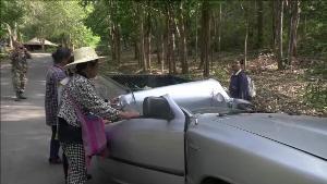 เห็ดถอบเที่ยวนี้อย่างแพง! ต้นไม้ใหญ่ อช.แม่ปิงล้มฟาดรถยนต์ชาวบ้านจอดริมทางลงหาเห็ดถอบพังยับเยิน
