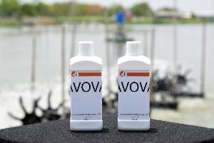 นาโนเทคจับมือจุฬาฯ พัฒนานาโนวัคซีนแบบแช่ แก้โรคระบาดในอุตฯ เพาะเลี้ยงปลา
