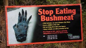 ป้ายรณรงค์งดกินเนื้อลิง (AFP Photo/STR)