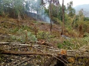 เขตรักษาพันธุ์สัตว์ป่าเชียงดาว ปิดหมู่บ้านนาเลาใหม่ หลังพบผู้ประกอบการบ้านพักทำผิดเงื่อนไข