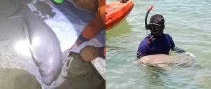 "#MGRTOP7 : ""ปุ๊กกี้ ชาลาล่า"" ถูกจับพัวพันยา | ""อุดมสุข"" วินนี้โคตรเถื่อน | ""ชายแดน"" เหยื่อกวดวิชาเตรียมทหารเถื่อน"