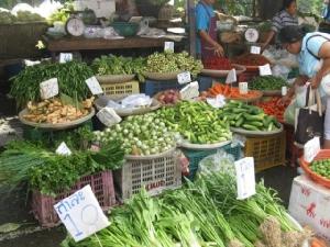 """ตะลึง!""""ผักห้างแย่กว่าผักตลาดสด"""" ไทยแพนเปิดผลตรวจผักผลไม้พบสารพิษตกค้างเกินมาตรฐาน 41% พบสารพิษไม่อนุญาต 12 ชนิด"""