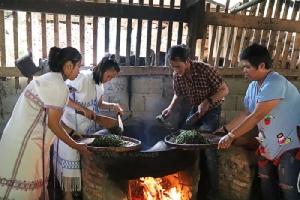 """ยลเสน่ห์บ้านเล็กกลางป่าใหญ่ ชุมชน""""ห้วยหินลาดใน"""" ชิมของเด็ดน้ำผึ้ง-ชา ตื่นตาต้นลำพูยักษ์ 10 คนโอบ"""