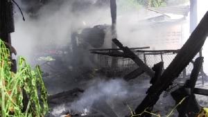 น่าสงสาร!นึ่งข้าวทิ้งไว้ไฟไหม้ห้องครัวคลอกสุนัขตายคากรง 6 ตัว