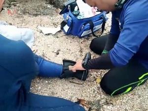 """เพื่อเธอ! อาสาสมัครดูแล """"เจ้ามาเรียม"""" ถูกปลากระเบนตำเท้าบาดเจ็บอีกราย"""