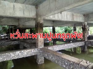ชาวละงูร้องช่วยซ่อมสะพานปูนกร่อน แตกร้าวจนเห็นโครงเหล็ก หวั่นทรุดพัง