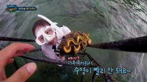 """ดรามายาวรายการเกาหลี """"Law of the Jungle"""" โชว์เก็บหอยมือเสือทำเอาทางการไทยแจ้งความเตรียมดำเนินคดี"""