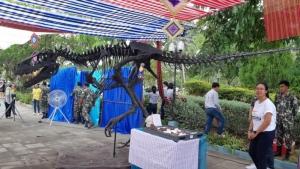 แบบจำลองโครงกระดูก ไดโนเสาร์ภูเวียงเวเนเตอร์ แย้มนิยมมิ ซึ่งเป็นการค้นพบสายพันธุ์ใหม่ สายพันธุ์ที่ 10 ของเมืองไทย