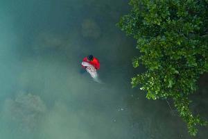 รมว.ทรัพยากรฯ ทำแผนพะยูนแห่งชาติ ประสานกระทรวงมหาดไทยดูแลพะยูนทั่วประเทศ
