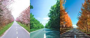 สีสันถนนบนฮอกไกโดใน 3 ฤดูกาลที่แตกต่าง (ภาพ : JNTO)
