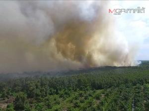 """""""วิทยา"""" บี้ รมว.เกษตรฯ สั่งกรมชลประทานเร่งสูบน้ำกู้วิกฤติไฟไหม้ป่าพรุ"""