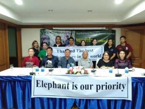 สุดทน! ปางช้างไทยตั้งโต๊ะจวกสื่อนอก บิดเบือน-จงใจชูภาพตะขอสับหัวช้างปั่นกระแสดรามาทั่วโลก