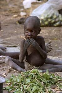 ภาพเด็กน้อยในค่ายที่ซูดาน กำลังกินใบไม้ประทังชีวิต ระหว่างรอคอยการนำส่งอาหารมายังค่าย (Alexander JOE / AFP)