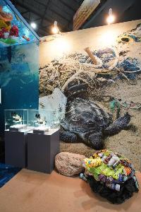 ขยะพลาสติกที่กลายเป็นภาระต่อทะเล