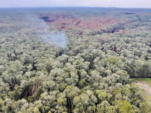 ทุกภาคส่วนติดตามสถานการณ์ไฟไหม้ป่าพรุทุ่งเสม็ดบางนกออก จ.สงขลา อย่างใกล้ชิด