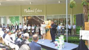 จระเข้ฯ เดินเกมรุกตลาดสีซีเมนต์ สตูดิโอNatural Color Designed by JORAKAY