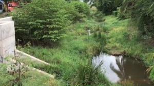 """ชัยภูมิจ่อขาดน้ำทั้งเมือง! แล้งลามหนัก """"เขื่อนลำปะทาว"""" แห้งเหลือน้ำผลิตประปาได้อีกแค่ 20 วัน"""