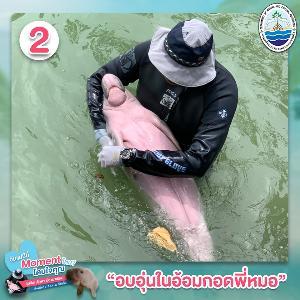 อบอุ่นในอ้อมกอดของแม่คน (ภาพ : กรมทรัพยากรทางทะเลและชายฝั่ง)