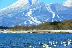 "JR-East ชวนเที่ยว ""โทโฮคุ ญี่ปุ่น"" ช่วงหน้าร้อน สัมผัสแหล่งท่องเที่ยวและของกินเด็ด"