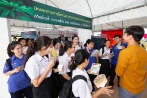 """อภัยภูเบศร จัดมหกรรมสุขภาพอาเซียน ชู """"โสมมาเลย์"""" เพิ่มอสุจิ-ความอึด ลาวใช้ """"กัญชา"""" รักษาริดสีดวง รูมาตอยด์ มะเร็งกระดูก"""
