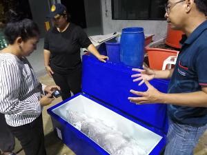 """อพวช. รับช่วงต่อพะยูน """"มาเรียม"""" สตัฟฟ์เพื่อการศึกษาผลักดันการอนุรักษ์สัตว์ทะเล เผยอีก 3 เดือนเสร็จ"""