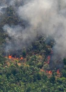 ผู้นำบราซิลส่งทหารดับ 'ไฟป่าแอมะซอน' หลังยุโรปขู่ฉีกข้อตกลงการค้า