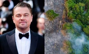 """หล่อรักษ์โลก """"ลีโอนาร์โด"""" บริจาค 153 ล้านบาทฟื้นฟูป่าแอมะซอนกู้วิกฤติโลกร้อน"""