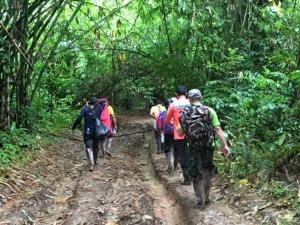 ด้วยความยากลำบาก จนท.เดินเท้าลุยป่าทุ่งใหญ่ฯ ข้ามวันข้ามคืน หามเด็กนักเรียนส่งโรงพยาบาลเหตุฝนตก ฟ้าปิด